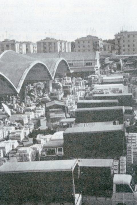 Bolognina, storia di un quartiere