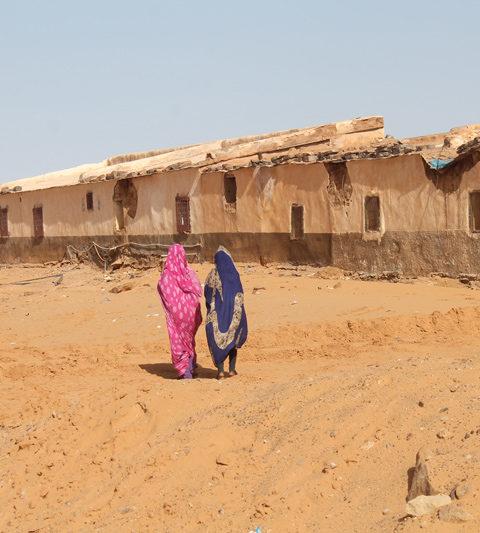La resistenza del popolo Sahrawi. Storia,musica, diaspora
